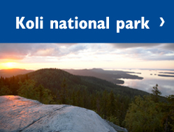 koli_national_park_249_189.jpg